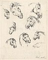 Plate 17- nine studies of horse heads, from 'Various heads and figures' (Diverses têtes et figures) MET DP831096.jpg