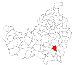 Location of Ploscoş