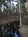 Pludi 2011 - panoramio (23).jpg