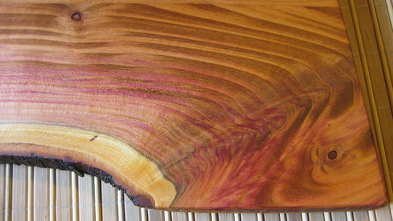 File:Plum wood, detail(with olive oil, polished) 3.jpg