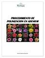 Polinizacion por david.pdf
