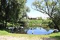 Pond - panoramio (31).jpg
