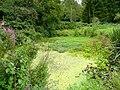 Pond at Green Bottom - geograph.org.uk - 1459043.jpg