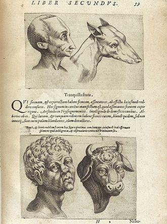 Physiognomy - Image: Porta 59