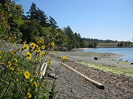 Portage park Thetis Cove beach. READ INFO IN PANORAMIO-COMMENTS - panoramio.jpg