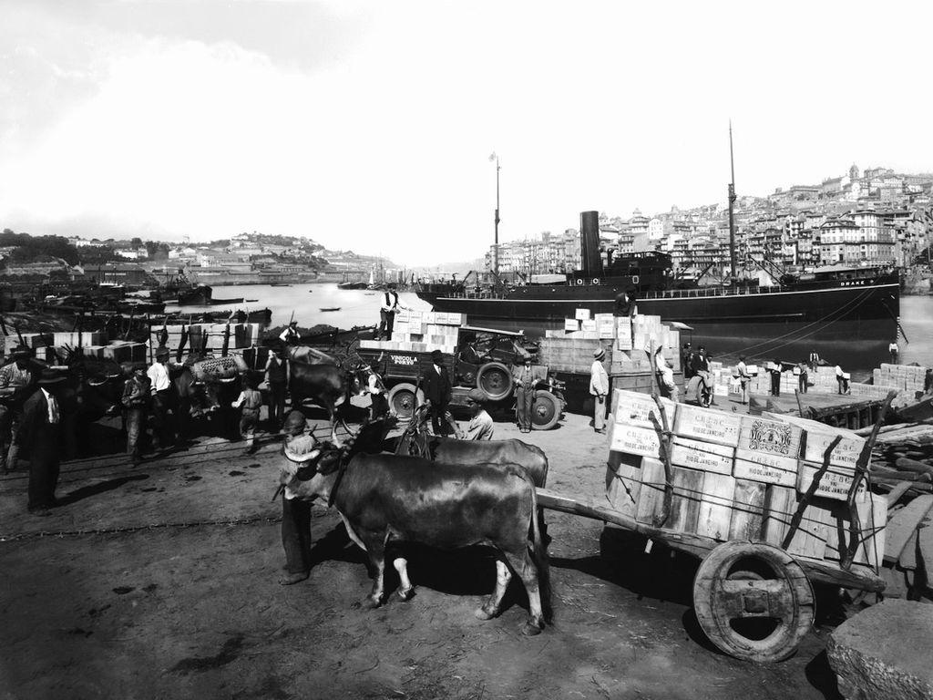 Chargement de portos sur les quais de Vila de Gaia dans les années 1930/1940 (?). Photo de Domingos Alvão