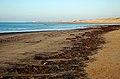 Prestwick Beach - geograph.org.uk - 1096436.jpg