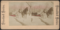Prospect Park, from Robert N. Dennis collection of stereoscopic views 3.png