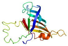 Protein POLR2H PDB 2f3i.png