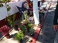 Puesto callejero Jantetelco 2.JPG
