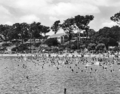 Queensland State Archives 2126 Moora Park and kiosk Sandgate c 1937.png