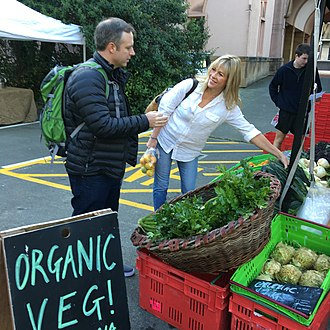 Thorndon, New Zealand - Farmers' market in the Cathedral car park