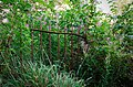 Railings and Fences (14973186007).jpg