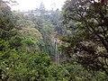 Rainbow Waterfall From Above.jpg