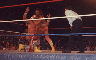 Randy Savage - Savage wrestling The Ultimate Warrior, who retired him at WrestleMania VII
