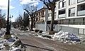 Requena nevada pel temporal de neu de gener de 2017 01.jpg