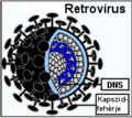 Retrovírus.png