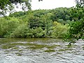 River Wye at the Counties Meet 2 - geograph.org.uk - 1441622.jpg