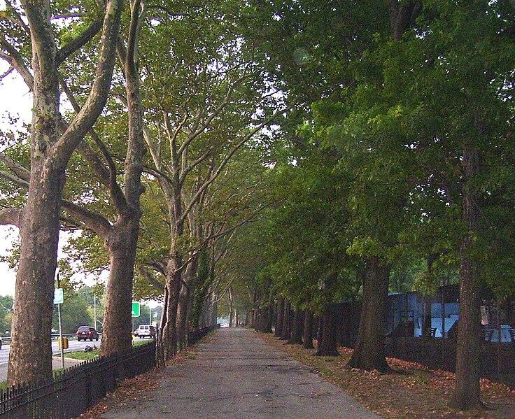 Riverside Park - Page 5 736px-Riverside_Park_walkway