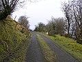 Road at Shasgar - geograph.org.uk - 1178599.jpg