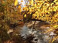 Rock Creek - Flickr - treegrow (10).jpg
