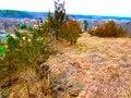 Rock Outcrop - panoramio (2).jpg