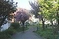 Rodalben, Park an der Kirchbergstraße.JPG
