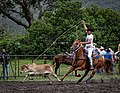 Rodeo Event Calf Roping 40.jpg