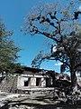 Ruinas MAYA Copan Honduras 05.jpg