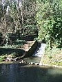 Ruscombe Brook - geograph.org.uk - 719347.jpg