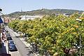 Rutes Històriques a Horta-Guinardó-carrer arenys 03.jpg