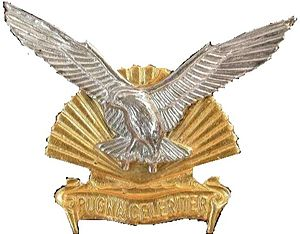 Durban Regiment - SANDF Regiment Durban emblem