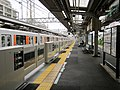 Saginuma Station Platform 02.jpg