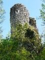 Saint-Front-la-Rivière ruines la Renaudie (54).JPG
