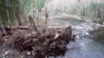 File:Salmon River wood jam & side channel restoration project at Wildwood.webm