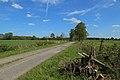 Schale Naturschutzgebiet Wehrstroot 06.JPG