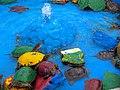 Schildkröten لاکپشت 02.jpg