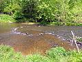 School trip Eno River SP 6625 (7003032542).jpg