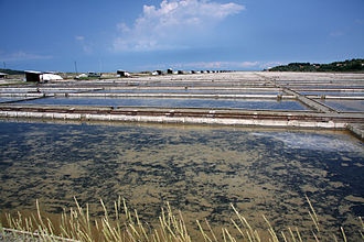 Istria - The Sečovlje Saltworks in the Northern Istria were probably started in Antiquity and were first mentioned in 804 in the report on Placitum of Riziano.