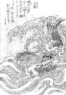 Ningyo fish-like yokai with a monkey's mouth with small teeth like a fish's, shining golden scales, and a quiet voice like a skylark or a flute; eating its flesh grants longevity; however, catching a ningyo brought storms and misfortune