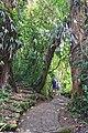 Selvatura Adventure Park 07.jpg