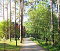 Seminaarinmäki campus - foot path.jpg