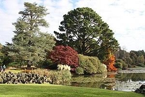 Sheffield Park Garden - Sheffield Park Gardens