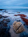 Shell Island Beach at Dusk.jpg