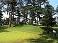 Shimla hilltop.JPG
