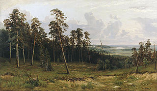 Landscape with forest