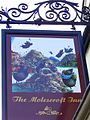 Sign for the Molescroft Inn.jpg