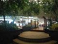 Singapore Changi Airport (4).jpg