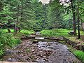 Sizerville State Park - HDR.jpg