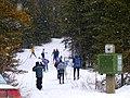 Skiing kananaskis 018.jpg